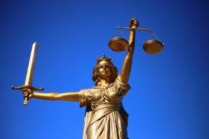 ley venta multinivel www.tucaminodelbienestar.com