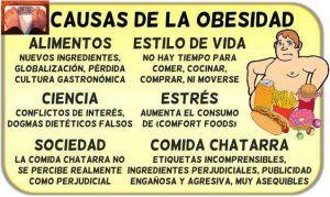 causas obesidad la calidad de la comida