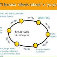 efecto rebote2