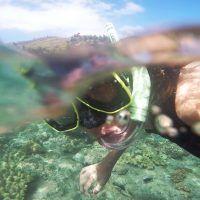 halloween destinos navidad snorkel www.tucaminodelbienestar.com