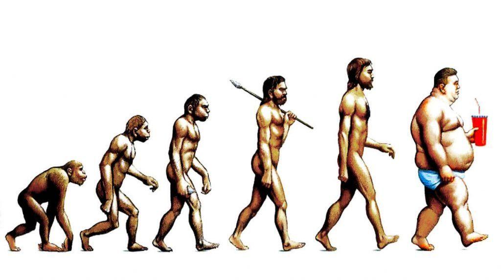 evolución-del-hombre-1 hago dieta engordo www.tucaminodelbienestar.com