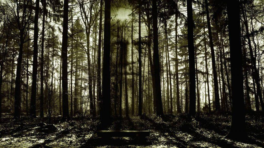 horror www.tucaminodelbienestar.com