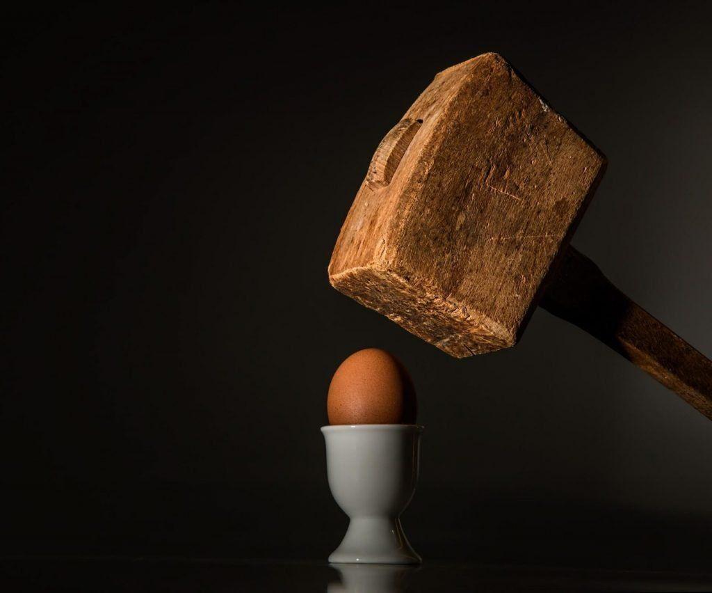 egg www.tucaminodelbienestar.com