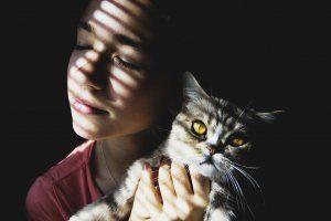 beneficios de tener un gato 3 www.tucaminodelbienestar.com