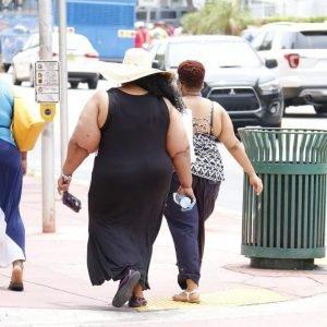 obesity grasa visceral www.tucaminodelbienestar.com